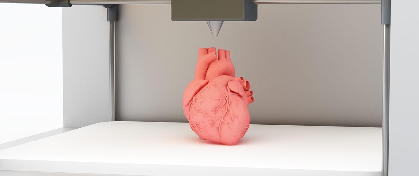 In 3D - Tim